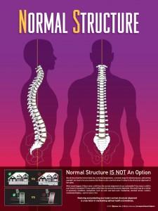 Normal Structure Chiropractic Chiropractor Columbia SC