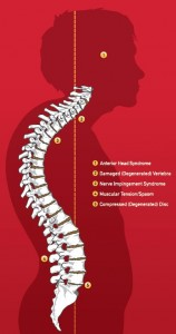 Strong Foundation Chiropractor chiropractic columbia sc