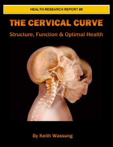cervical curve and chiropractic